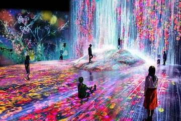Private transfer to teamLab Borderless with admission ticket