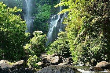 Bali Sekumpul Fossettur med guide