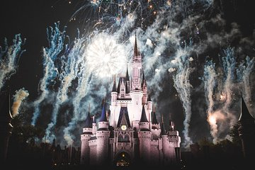 DisneyWorldTrip package 1 Day ticket with private transport