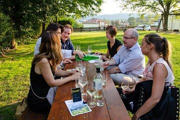 Half-day Countryside Wine Tour near Vienna Tickets
