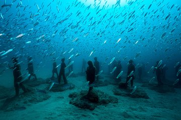 Museo Atlantico for non-certified divers