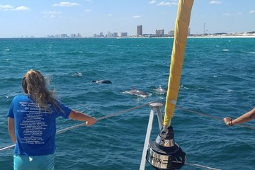 Panama City Beach Dolphin Sightseeing Sail on The Privateer Catamaran