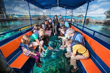 Aquarium Myrtle Beach Admission Ticket