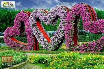 Miracle Garden Dubai 2021