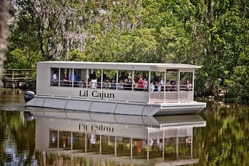 Swamp and Bayou Sightseeing Boat Tour with Transportation from New Orleans