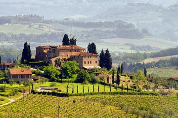 Tuscany Countryside Day Trip from Rome including 3-Course Lunch & Wine Tasting