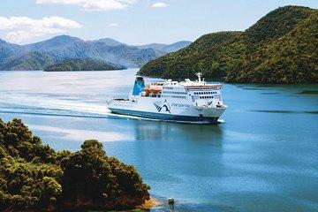 The 10 Best Wellington Tours, Excursions & Activities 2019
