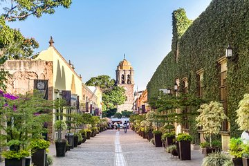 Full-Day Toriles and Tequila from Puerto Vallarta with Tequila Tasting