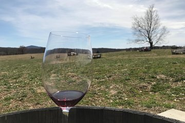 Washington DC - Virginia Wine Country Group Day Tour