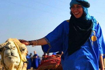 Atlas Mountain & Camel ride, day trip