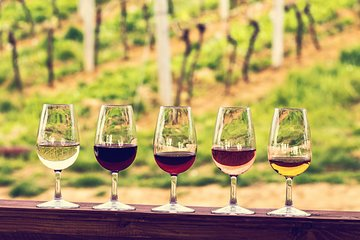 Médoc Region Half-Day Wine Tour with Winery Visit & Tastings from Bordeaux