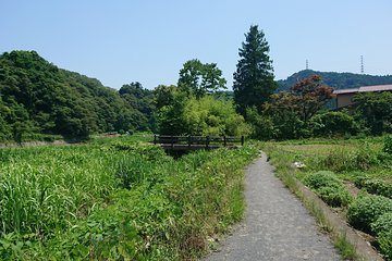 Tokyo Off-the-Beaten-Track Private Walking Tour of Nishitama