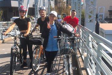 One & Only! Weird Tokyo Bike Tour