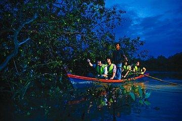Fireflies & The River of Life Tour from Kuala Lumpur