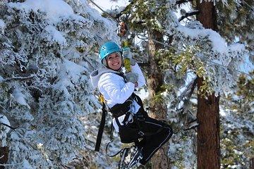Zipline Tour - 9 high-speed ziplines & fun suspension bridge