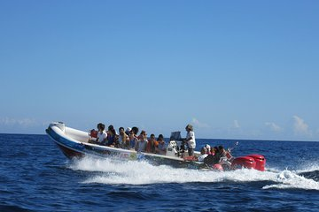 Okikoki Banis - Comino Blue Lagoon Speedboat Trip- Fast Ferry