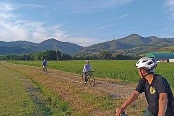 Tuscan countryside bike tour and saffron tasting Tickets