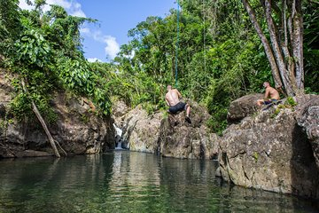 El Yunque Rainforest Off the Beaten Path and Bio Bay Kayaking Combo Tour