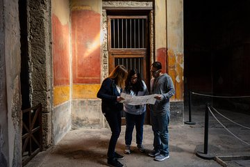 Mt. Vesuvius and Pompeii Day Trip from Naples all inclusive