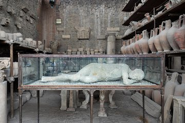 Pompeii Ruins & Mt Vesuvius Volcano Day Trip from Rome