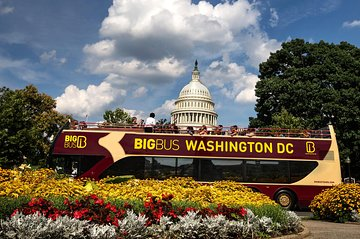 Washington, D.C. Open Top Bus Hop-on Hop-off Sightseeing Tour
