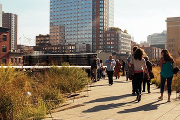 Highlights of the High Line: New York's Futuristic Green Space with a Local