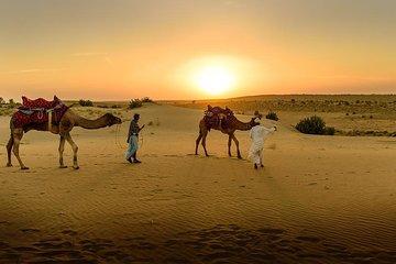 Desert Agafay & Atlas Mountains, Valleys & Waterfalls Tour from Marrakech