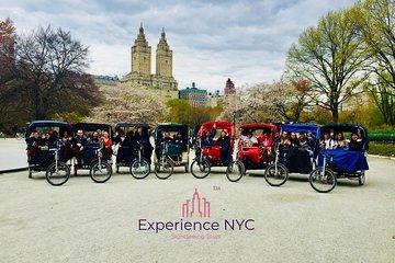Central Park Private Pedicab Tour