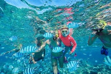 9750b4cd7e6 Bora Bora Shared Circle Lagoon Snorkeling Tour