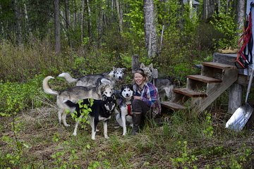 Intimate Visit of an Alaskan Off-Grid Homestead with Sled Dogs - Talkeetna