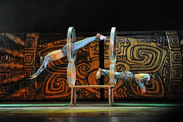 Acrobatic Show and Beijing Duck Dinner with Private Hotel Transfer