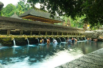 Monkey Forest, Holy Water Temple & Hot Springs