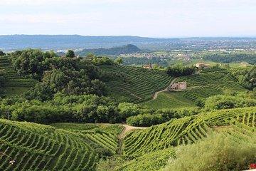 Prosecco wine tour. Half-day