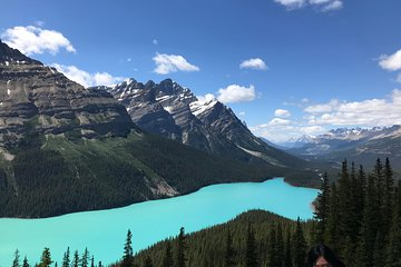 lake louise day parkway banff full national icefield tour tripadvisor park tours
