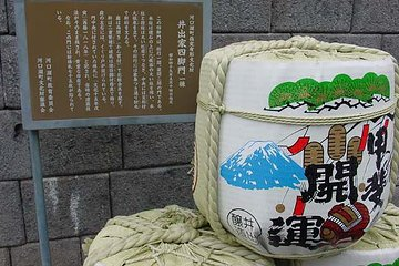 From Tokyo:Mt.Fuji Panorama Ropeway and Ice Caves tour