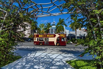 Go Miami All-Inclusive Pass with Hop-on Hop-off and Zoo Miami