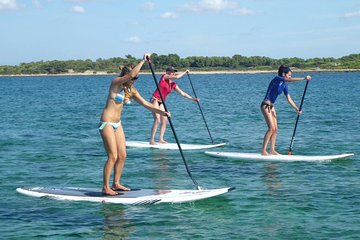 Stand up Paddle Surf beginner tour