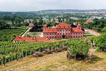 Skip the Line: Prague Botanical Garden Outdoor Exposition Ticket