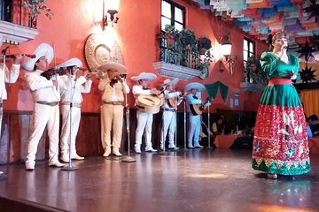 Live a Mexican Night in Plaza de los Mariachis
