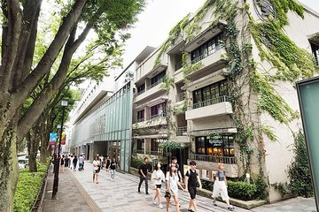 Essential tour for fashion and art in Tokyo for 6 hours with local lunch