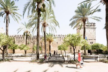Cordoba Full Day Trip with Mosque Direct Entry from Malaga