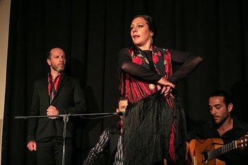 Show Experience Flamenco Café