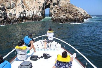 Islands of Lima Sightseeing Cruise