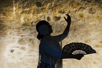 Flamenco, Tapas and Wine Tour: BEST OF Málaga in one evening!