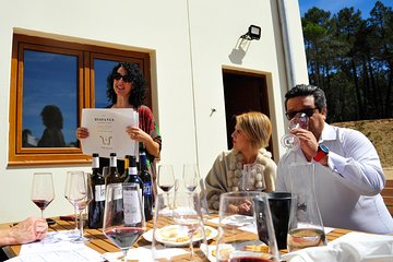 Wine Day Guided Tour to Ribera del Duero from Madrid