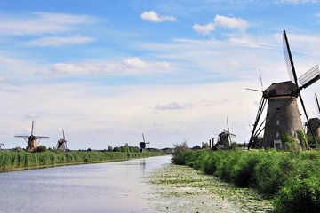 Flower Auction & Kinderdijk world heritage | Private Tour incl. pick up