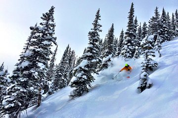 Kicking Horse Mountain Resort (Golden) - 2019 All You Need to Know on kicking horse skiing, red mountain ski map, banff ski map, lake louise ski map, kicking horse bike park, kicking horse summer,