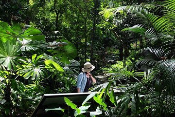 Penang Round Island Tour With Tropical Spice Garden & Entopia Butterfly Farm