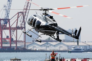 THE TOP 10 New York City Helicopter Tours (w/Prices)