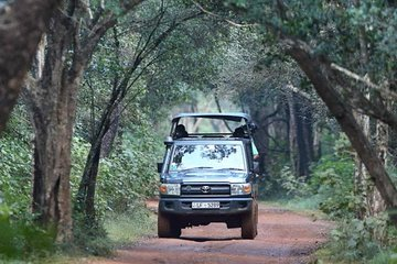 Top 10 Booked Kandy 4WD, ATV & Off-Road Tours (with Prices)